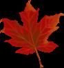 COVID-19 – Canada Recovery Benefits – February 8, 2021